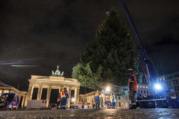Osadenie tradičného vianočného stromu pred Brandenburskou bránou v Berlíne 23. novembra 2020.
