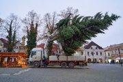 Vianočný stromček priviezli na Mariánske námestie.