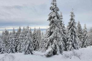 Zimná scenéria na Kojšovke.