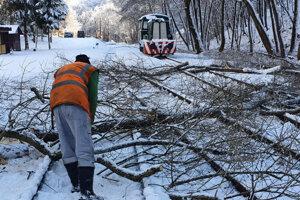 Odstraňovanie popadaných stromov.