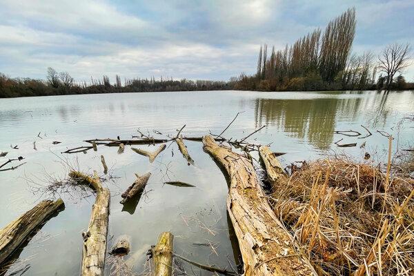 Na tomto rybníku by mohla už onedlho vyrásť atrakcia.