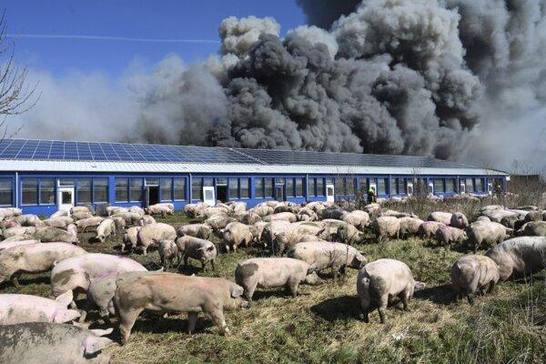 Požiar na farme v nemeckoej obci Alt Tellin.