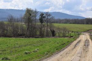 V Belej nad Cirochou vyrúbalo Pozemkové spoločenstvo Urbariát stromy bez povolenia. Ťažilo sa v týchto miestach.