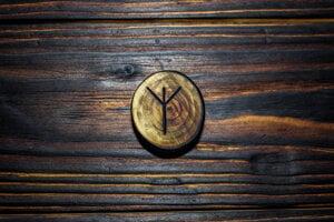 Runu Algiz, ktorú má Jaroslav Pagáč vytetovanú na zátylku, používali nacisti ako symbol narodenia namiesto súčasnej hviezdičky a jej obrátenú podobu na znak smrti namiesto súčasného krížika.