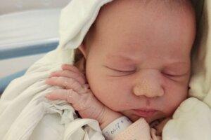 Zara Vrábelová (3950 g a 52 cm) sa narodila 28. apríla v levickej pôrodnici. Doma ju čakala staršia sestrička Mirka.