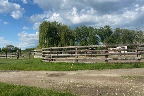 Takmer tragický incident sa stal na ranči v Krásnej.
