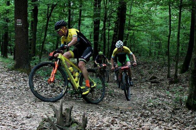 Cyklisti v akcii