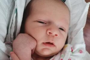 Tamara Šedivá (2750 g a 48 cm) sa narodila 25. júna v levickej nemocnici rodičom Marianne Chovanovej a Richardovi Šedivému z Levíc.