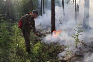 Horí viac než milión hektárov lesnej plochy.