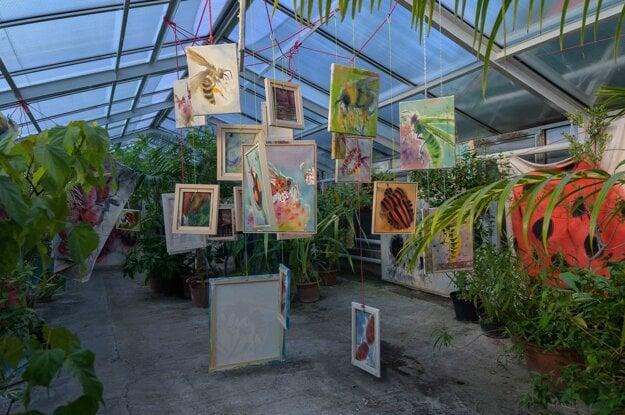 Výstava Hlina a hmyz v košickej botanickej záhrade.