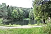 Jedno z banských jazier na Turzove v Gelnici. Má chladnú a priezračnú vodu, je pstruhovým revírom.