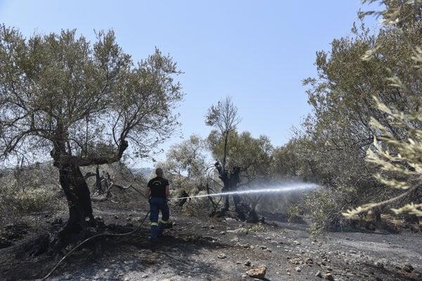 V dôsledku extrémneho sucha a silného vetra sa požiar vymkol spod kontroly.