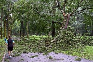 Popadané stromy po búrke a silnom vetre. Ilustračné foto.