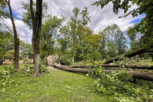 Mestský park v Banskej Bystrici po veternej smršti.