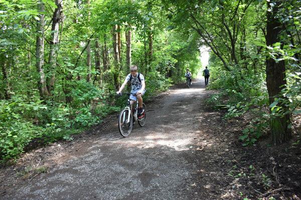 Lesopark slúži v súčasnosti najmä športujúcej verejnosti, ale i na prechádzky či majiteľom psov. Mesto ho chce revitalizovať.