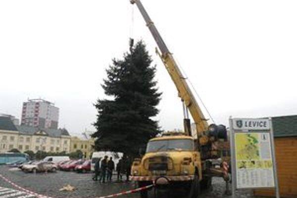 Desaťmetrový smrek mestu daroval jeden z jeho obyvateľov.