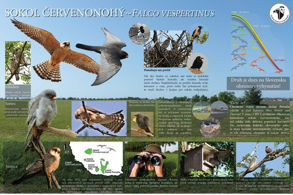 Tabule informujú o ohrozenom druhu.