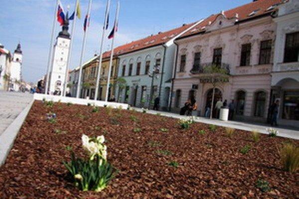 Pre tento rok mesto vyčlenilo na výsadbu 80-tisíc eur. Najviac sa bude sadiť na Linčianskej a Prednádraží.