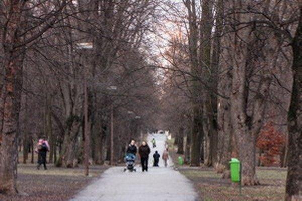 Park Janka Kráľa v Trnave.