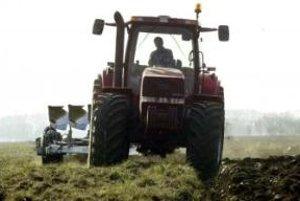 Časť hniezdiska dropa fúzatého zničili orné zariadenia poľnohospodárskeho družstva Dunaj ešte v roku 2005.