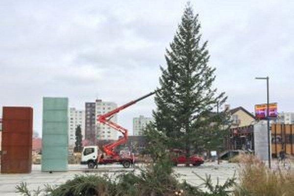Vianočný stromček nemôže v mestách chýbať.