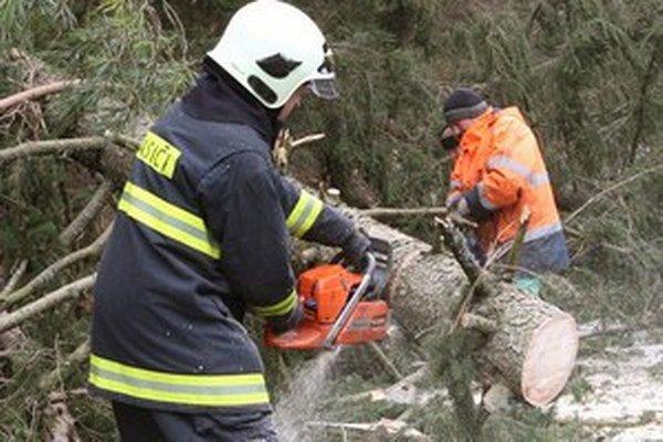 Pády stromov môžu spôsobiť veľké škody