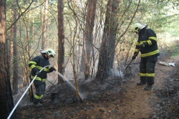 Lesný požiar sa našťastie podarilo uhasiť včas.