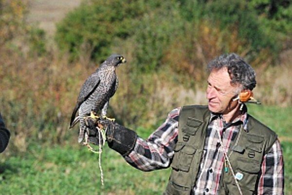 Slovenskí sokoliari nadviazali na 4000 rokov starú tradíciu lovu.