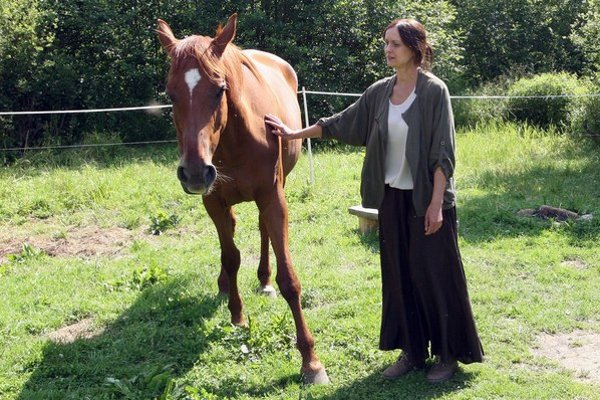 Po odchode zo školy chová kone.