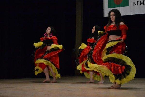 Rómovia predviedli spev i tanec.