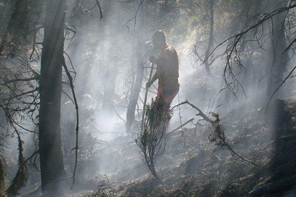 Požiare lesa radia hasiči medzi najnáročnejšie.