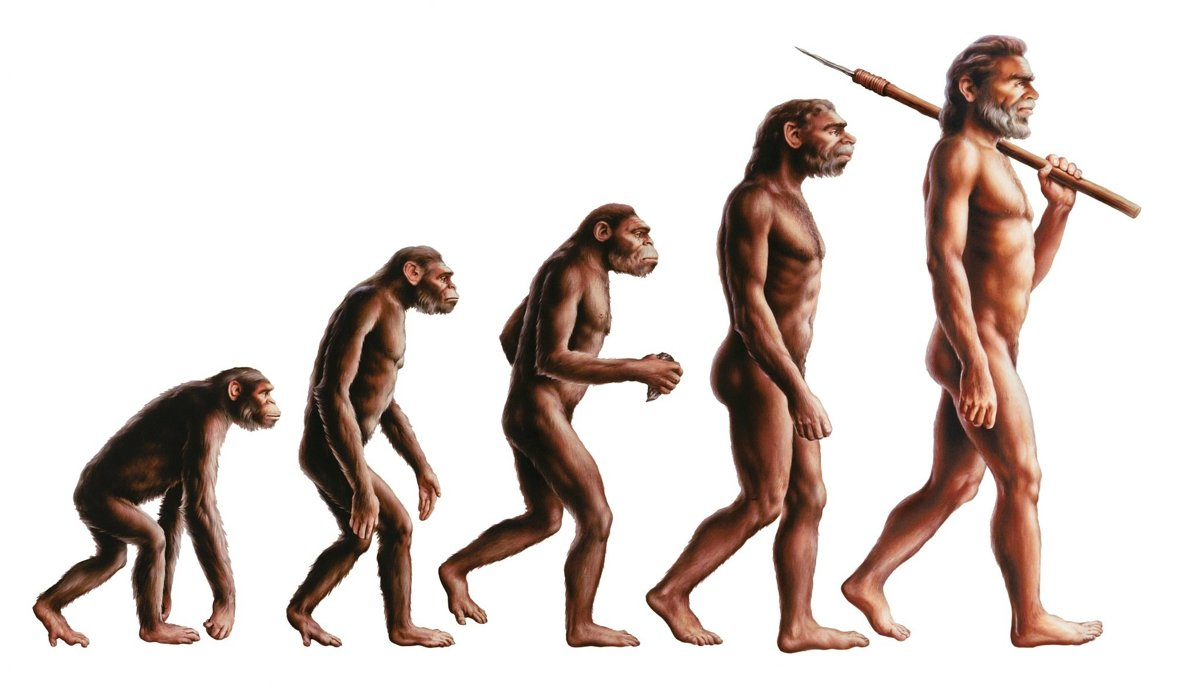 Приколом про, эволюция дарвина в картинках