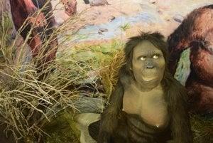V podzemí žili aj predchodcovia ľudí.