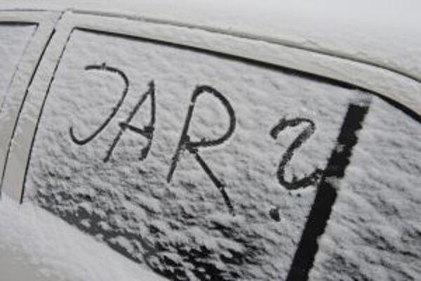 Už od rána husto sneží.