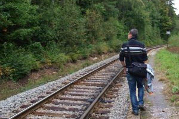 Železničná trať v okolí Kremnice. V období od polovice septembra do polky októbra zahynuli na nej štyri medvede.