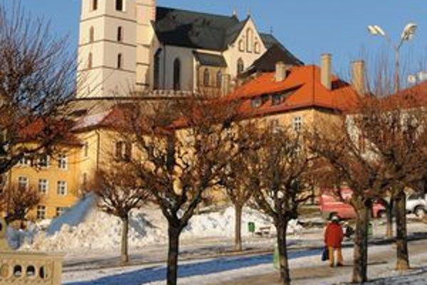 Mesto chce javory na námestí nahradiť novými.