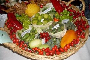 Zeleninovo-ovocný kôš záhradkárov z Opatoviec.
