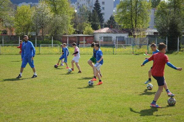 Zverenci trénera Tomáša Tlelku počas tréningu v piatok 6. mája.