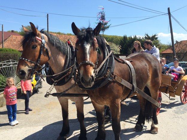 Deti sa mohli povoziť na koči ťahanom koňmi.