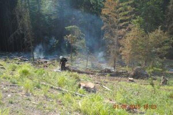 V Radoli likvidovali hasiči požiar v náročnom teréne.