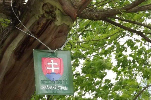 Takéto označenie má viacero stromov okrese.