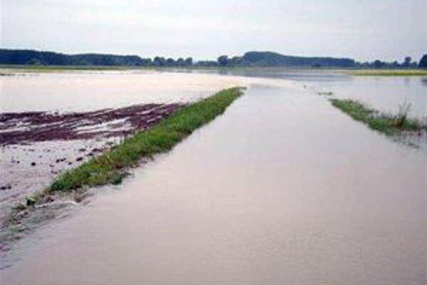 Dažde a chlad v máji ovplyvnili úrodu okresu