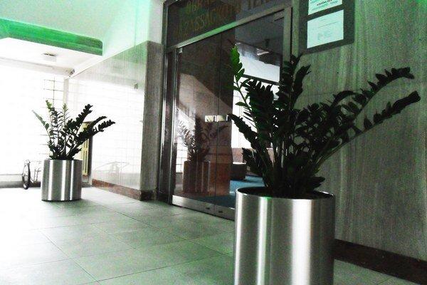 Kvetináče pred obradnou sieňou mestského úradu.