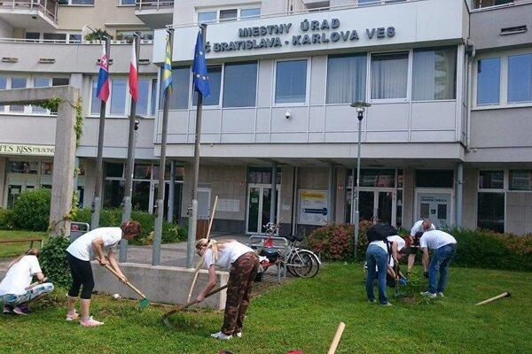V rámci aktivít miestneho úradu v mestskej časti Bratislava-Karlova Ves firemní dobrovoľníci skrášlili školské námestie pred ZŠ A. Dubčeka na Dlhých Dieloch - vyčistili záhony od odpadkov, buriny, dosypali mulčovaciu zmes a ponatierali lavičky. Ďalšia partia dobrovoľníkov okopávala nové stromčeky a vysypávala ich čerstvou štiepkou z orezaných stromov v Karlove Vsi.