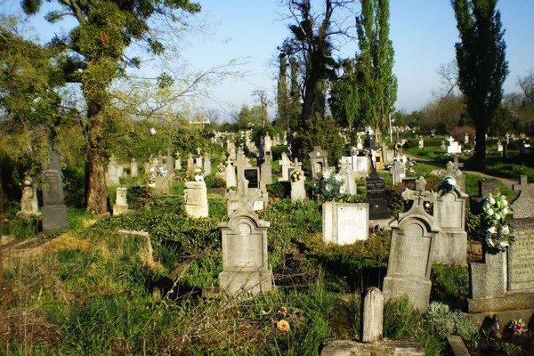 Historický cintorín v Palárikove.