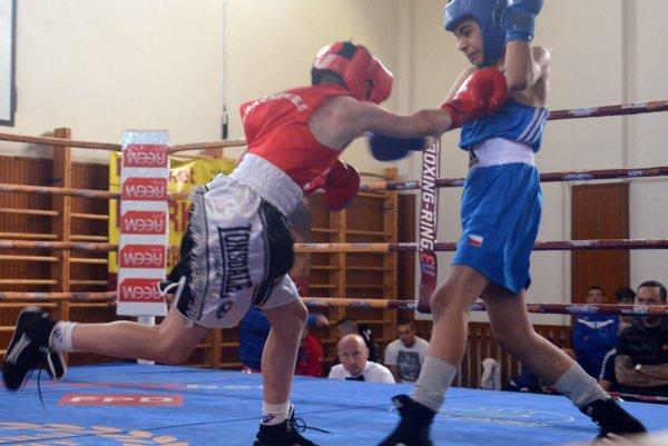 V ringu sa predstavili boxeri zo všetkých kútov sveta.