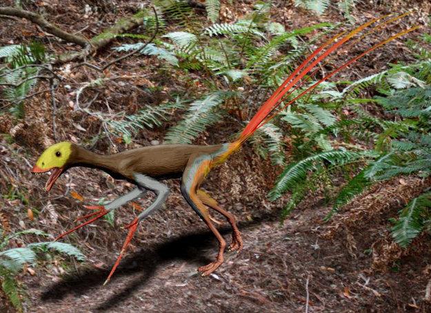 Epidexipteryx hui mal tiež kožu pokrytú pierkami.