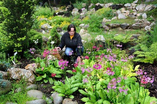 Starostlivosť o rastliny. Na to, aby rastliny krásne zakvitli, je nevyhnutná príkladná starostlivosť.
