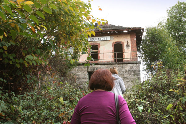 Fasádu historickej staničnej budovy si vyhliadli stovky lienok východných.