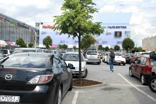 Stromy medzi autami. Na Toryskej sú rozmiestnené pravidelne.